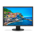 NEC Display Solutions - PA243W-BK