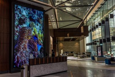 What are video walls used for?