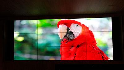 Latin American company installs Christie video wall