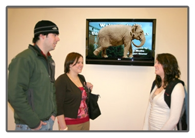 Why Digital Signage Content is King – Part 2