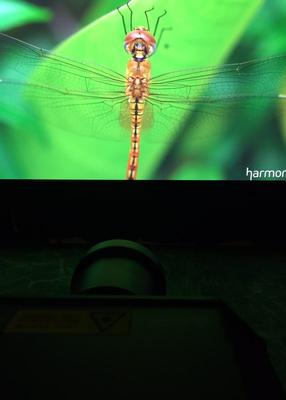 Florida Integrators Treated to Live Demos of Digital Projection's INSIGHT 4K LASER
