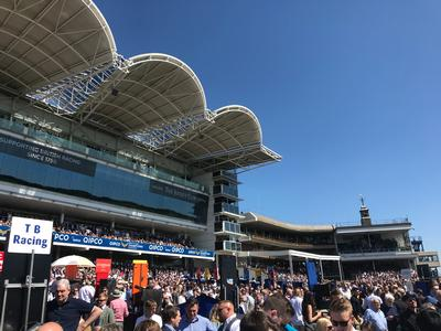 AudioTek Upgrades the Sound for Newmarket Racecourse with Community