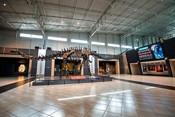 Georgia's Tellus Science Museum wows guests with 2.5MM LED video wall and Digital Displays from LG and Peerless-AV® Mounting Solutions