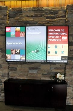 NEC Display: International Specialty Products