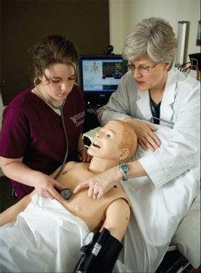 WSU Nursing Program